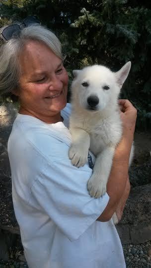 Heidi's white puppy 1