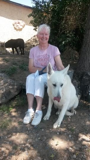 past customer with Heidi - adult german shepherd